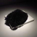Ingrid Bachmann, Pelt (Bestiary), 2012