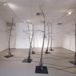 Bionic Forest