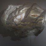 Erika Dueck, Sans titre (série The Ephemeral Mind), 2014