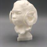 Auriea Harvey - ram-maquette