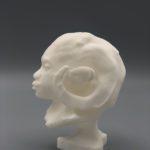 Auriea Harvey - ram-maquette4